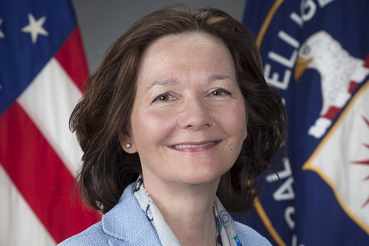 Photo: Official portrait of CIA deputy director Gina Haspel.  Credit: CIA