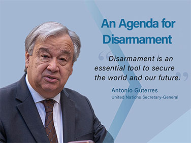 An Agenda for Disarmament