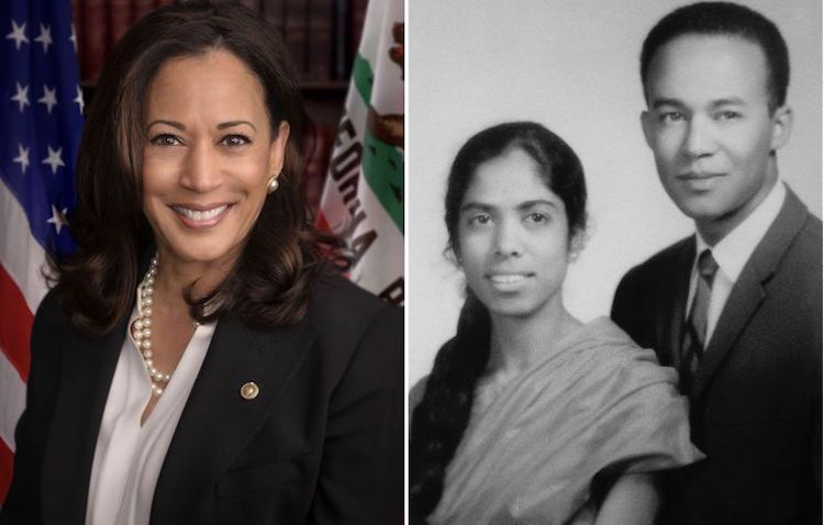 Collage of pictures (left) of Senator Kamala Harris, official US Senate photo (Source: Wikimedia) and (right) her parents, Shyamala Gopalan and Donald Harris. (Source: San Jose Mercury News).
