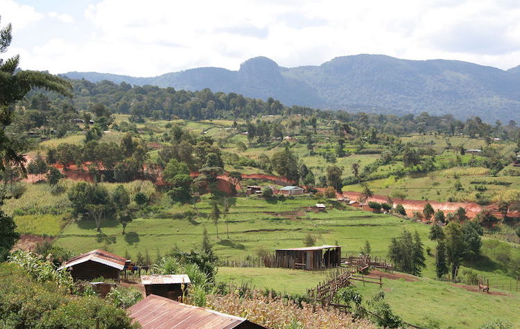Photo: Agricultural countryside in Kenya with surrounding hills of Kapsowar with Mt. Kipkinurr in background. Source: Wikimedia Commons.
