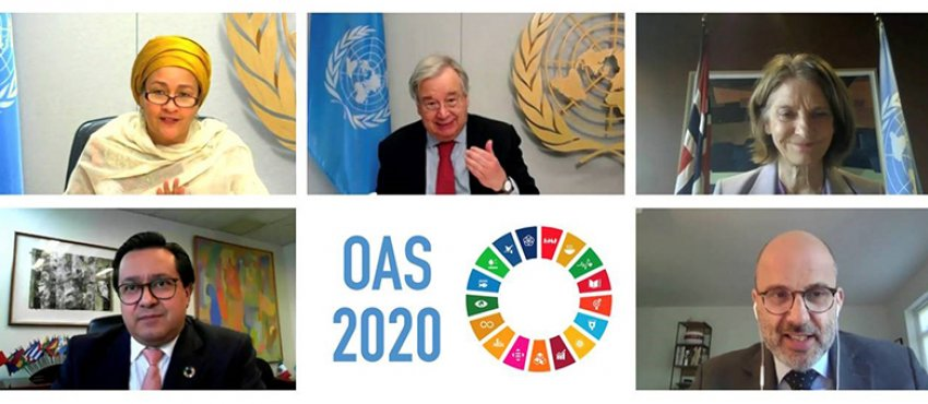 Photo: ECOSOC's 2020 Operational Activities Segment (OAS) on development issues took place through a series of virtual meetings from 19 to 22 May and on 27 May 2020, under the chairmanship of the Deputy Permanent Representative of Mexico, as ECOSOC Vice-President.  Credit: UN