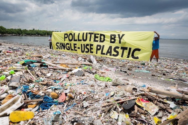 Photo source: Greenpeace.org